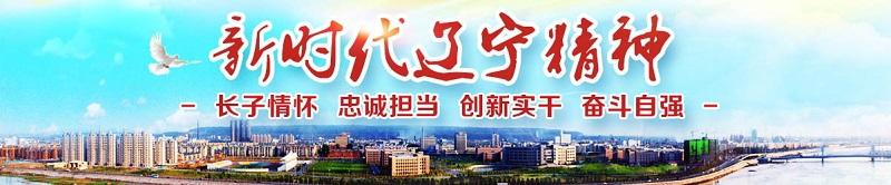 辽宁石油化工大学(本科)