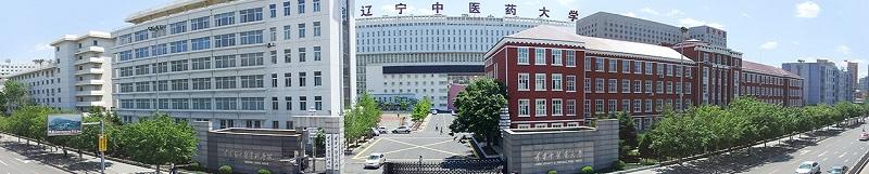 辽宁中医药大学(本科)