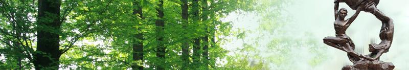 黑龙江林业职业技术学院  (专科)