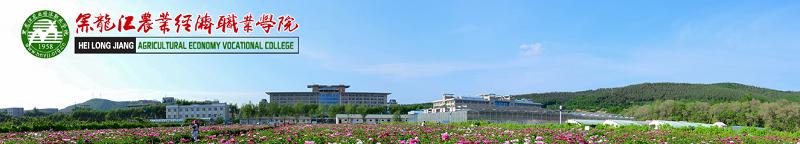 黑龙江农业经济职业学院  (专科)