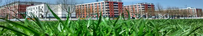 郑州信息工程职业学院(专科)