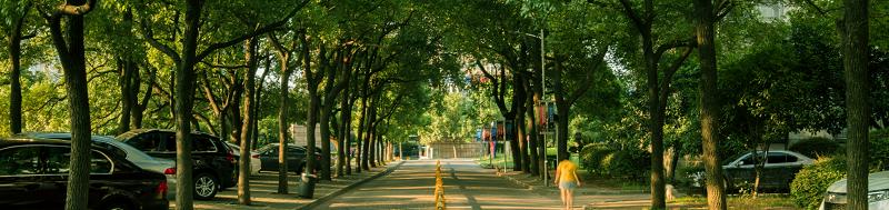 长沙理工大学城南学院(本科)